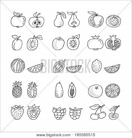 Fruit hand drawn icon set in line style. Perfect vector design elements for decorations organic food pattern wrapping paper bioproducts wallpaper. Organic product for healthy food concept