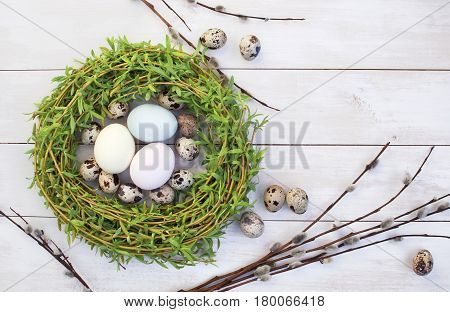 Easter composition made from colored chicken and quail eggs in a nest with a pussy-willow on a white wooden background. Holiday concept with copy space view from above.