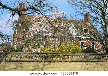Large English House with Flowers to front
