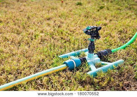 Sprinkler head for spraying water over green grass
