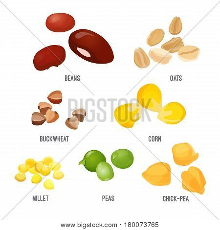 Cereal grain piles isolated on white vector poster. Collection of corn types ordered in piles realistic colorful picture. Useful and healthy natural meal concept with products for cooking dishes