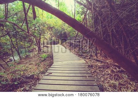 Wooden walkway in jungle along waterfalls in Thailand. Beautiful asian landscapes.