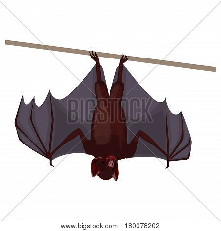 Brown flitter mouse with opened wings flat design isolated on white. Dark bat hanging upside down and keeping his paws for thin stick. Vector illustration of cheiroptera mammals cartoon style