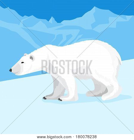 Big polar bear at north pole cartoon graphic style. Vector illustration on snow-capped mountains or glaciers background. Ursus maritimus representative predatory mammals.