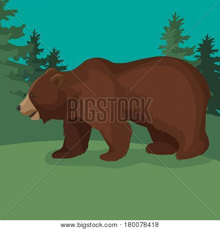 Large brown bear side view close-up graphic walking in green wood. Wild animal stands on four paws with slightly opened mouth. Vector illustration of terrestrial predaceous mammal web banner.