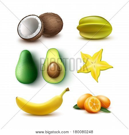 Vector set of whole and half cut tropical fruits avocado, banana, coconut, carambola, starfruit, kumquat isolated on white background