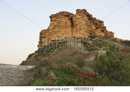 Hill in Ghanj Tuffieha in Malta. Ramla Bay in Malta, maltese landscape with the hill and spring flowers on beautiful sunrise hours. Malta, Europe