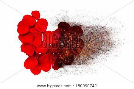 Heart of red rose petals burns burned to black ash