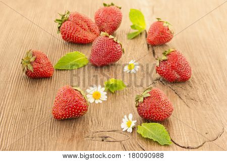 Ripe red strawberries and small daisy flowers on a wooden background. Strawberries over wooden table background with copy space.