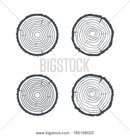 Log Cross section Four Isolated Illsutrations. Vector illustration