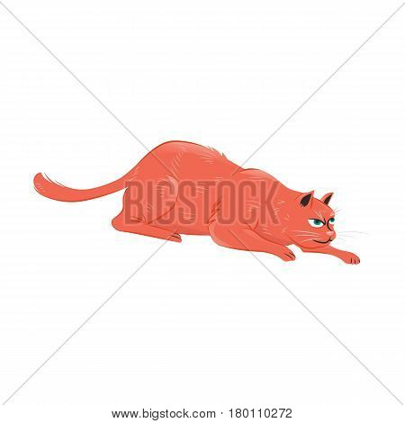 Vector illustration of a red cat crawling preparing for hunting