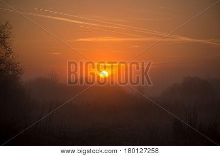 Sunrise With Nice Orange Sun Over The Marshland