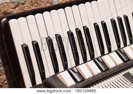 Accordion Keyboard In The Closeup Image