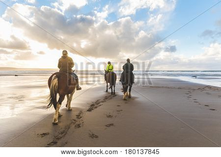 People Horse Riding On The Beach
