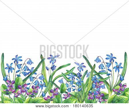 Flower frame of the Fragrant violets and Scilla bifolia blue. Hand drawn watercolor painting on white background.