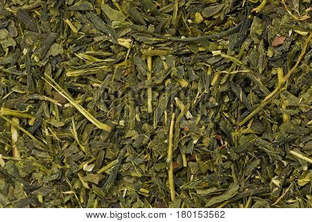 Background texture of dried green tea leaves.