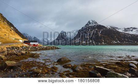 Shiny red houses on the shore of Lofoten islands Norway