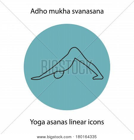 Adho mukha svanasana yoga position. Linear icon. Thin line illustration. Yoga asana contour symbol. Vector isolated outline drawing