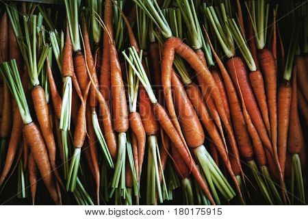 Agricultural pile of carrot at farmer's market