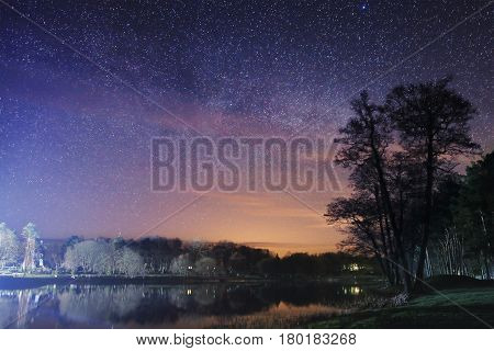 Night landscape of the park with a tree and a lake in the background of the starry sky. Colorful starry night sky. The flickering lights of the stars. A beautiful milky way.