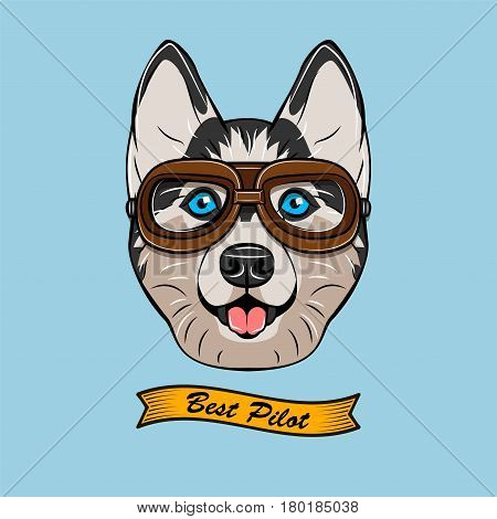 Husky wearing a pilot glass vector illustration isolated on blue background