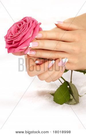 Hands With A Rose