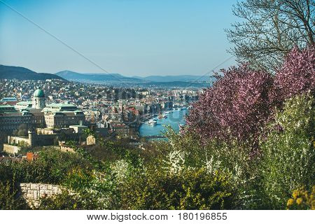 View over Buda side of Budapest with Buda castle and Danube river and blooming trees from viewpoint on Gellert hill on sunny spring day
