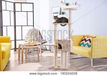 Cute cats on cat tree in modern room