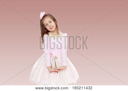 Dressy little girl long blonde hair, beautiful pink dress and a rose in her hair.She folded their hands in front of him.