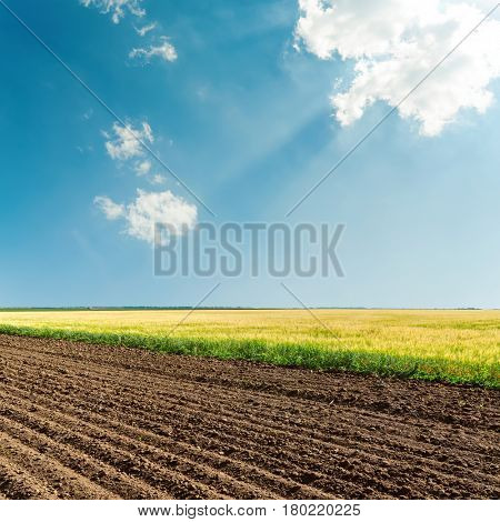 sun over clouds in blue sky and agricultural fields