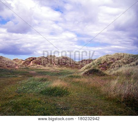 Sand Dunes At The Holy Island Of Lindisfarne