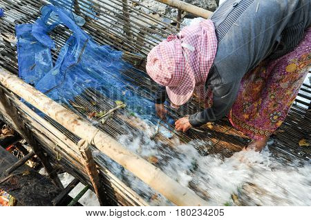 Woman Fishing With A Trap In The Mekong River