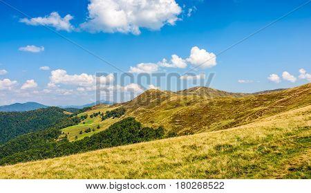 Carpathian Mountain Ridge In Late Summer
