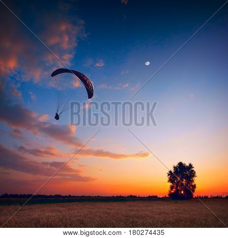 Paraglide In A Sunset Sky