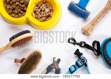 Collar, bowl with feed, leash, delicacy, combs and brushes for dogs. Isolated on white background. Top view. Still life. Copy space