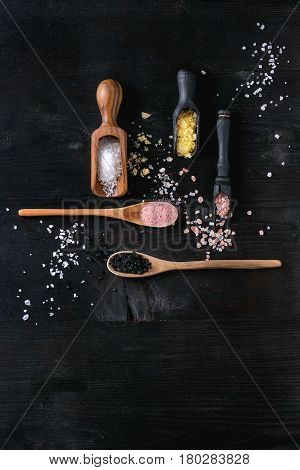 Variety of different colorful salt yellow saffron, pink, black himalayan, white sea and fleur de sel in wooden spoons over black burnt wood background. Top view with space
