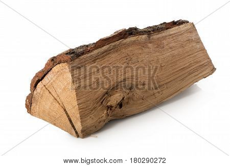 Splinter of a log isolated on a white background