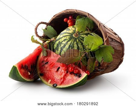 Watermelon and guelder in a basket isolated on white