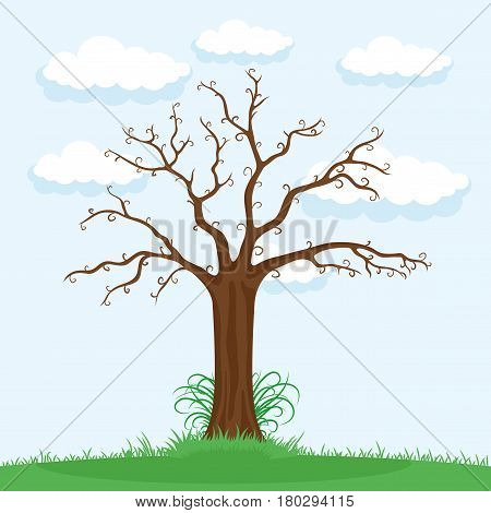 Tree without leaves on a blue background.