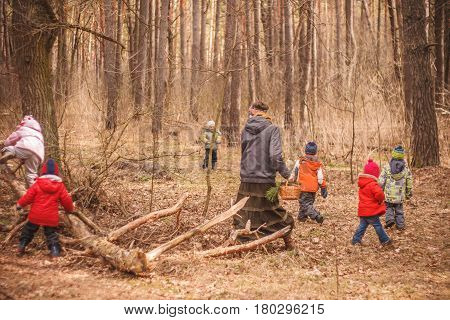 Group of six little kids with a kindergartener running in the forest and climbing trees. Early spring pine forest hike in waldorf kindergarten.
