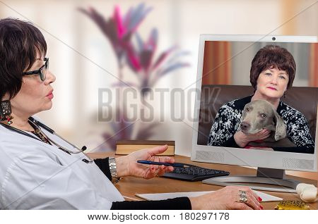 Telemedicine veterinarian has just examined symptoms of weimaraner dog during video chat with mistress. At now virtual vet appoints a meeting at clinic for further diagnostics. Horizontal medium shot on blurred interior background