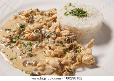 Stewed Chicken With White Rice And Mashroom Sauce
