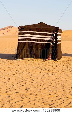 In Oman     Empty Quarter