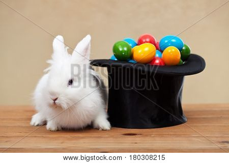 Easter bunny guarding the colorful eggs put in a magician hat