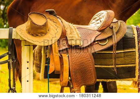 Cowboy hat saddle strings skirt horse competition equipment. Taking care of animals concept