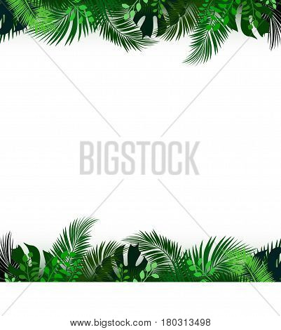 Tropical Foliage. Floral Design Background. Vector Template