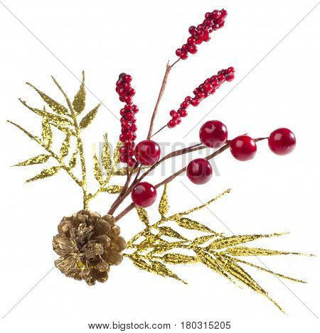 Chtismas decoration with scpuce berries and twig in white background