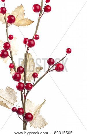 Christmas decoration with red berries and leafs on left side