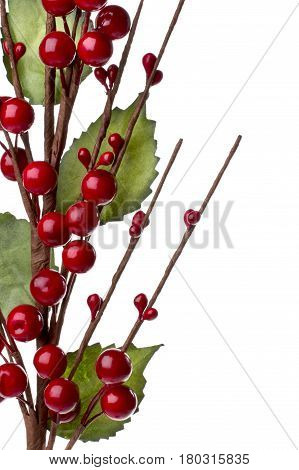Christmas decoration withe red berries and green leafs isolated on white