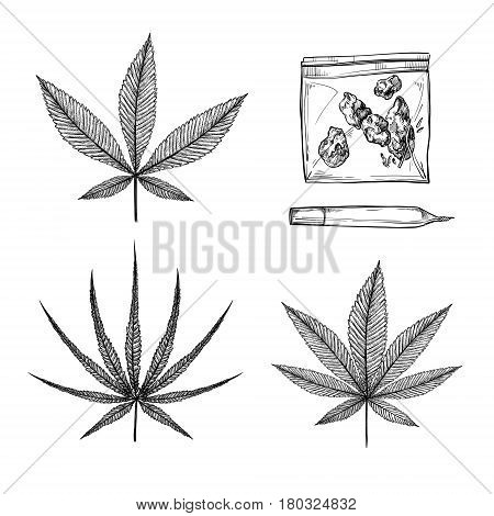 Hand drawn vintage vector illustrations - Medical cannabis (Indica ruderalis sativa). Marijuana sketch. Perfect for invitations greeting cards posters prints